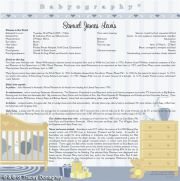 Babyography� Birth Certificate Design 2 (30.5cms x 30.5cms) Blue Unframed/Laminated/Framed/ Canvas or MDF Block Mounted