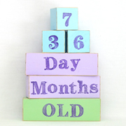 Baby Age Milestone Blocks - record your babys age in photos ICE, MAUVE AND FRESH GREEN