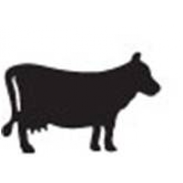 Flatboard Chalk Board<br>Cow