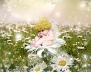 Kids and Baby Fantasy Photo Illustration 'Daisy Fairy Baby'