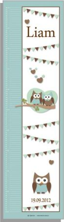 Growth Chart Personalised for Kids Growth Chart - Cute Hoots BLUE