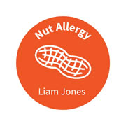 .Personalised School Labels Nut - Carnival - Labels Allergy 30 labels free shipping