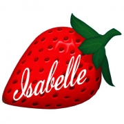 Personalised ClothingStrawberry DesignAvailable in a t-shirt, bib, bodysuit, singlet, apron, santa sack, library bag & shoulder bag