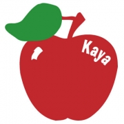 Personalised ClothingApple DesignAvailable in a t-shirt, bib, bodysuit, singlet, apron, santa sack, library bag & shoulder bag
