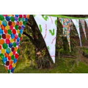Bunting - The Very Hungry Caterpillar 9 flags