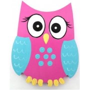 Clip-a-licious Hair Clip HolderOwl Bright Eyes - Pink & Blue