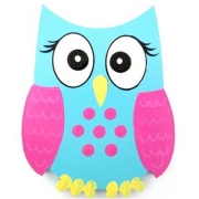 Clip-a-licious Hair Clip HolderOwl Bright Eyes - Blue & Pink