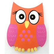 Clip-a-licious Hair Clip HolderOwl Bright Eyes - Orange & Pink