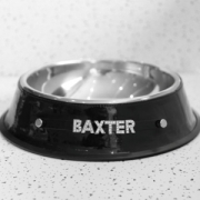 Pet Bowl - Black Bling (Personalised)