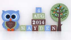 .Wooden Blocks - Personalised BLOCKS - WOODLAND FRIENDS BOY SET name, date and two freestanding blocks